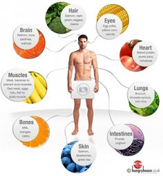 Foods to Feed Your Muscles Well